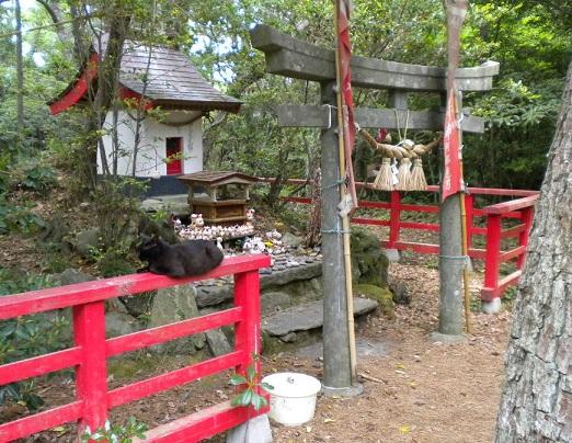 Sursa: voyagetocatsisland.blogspot.com